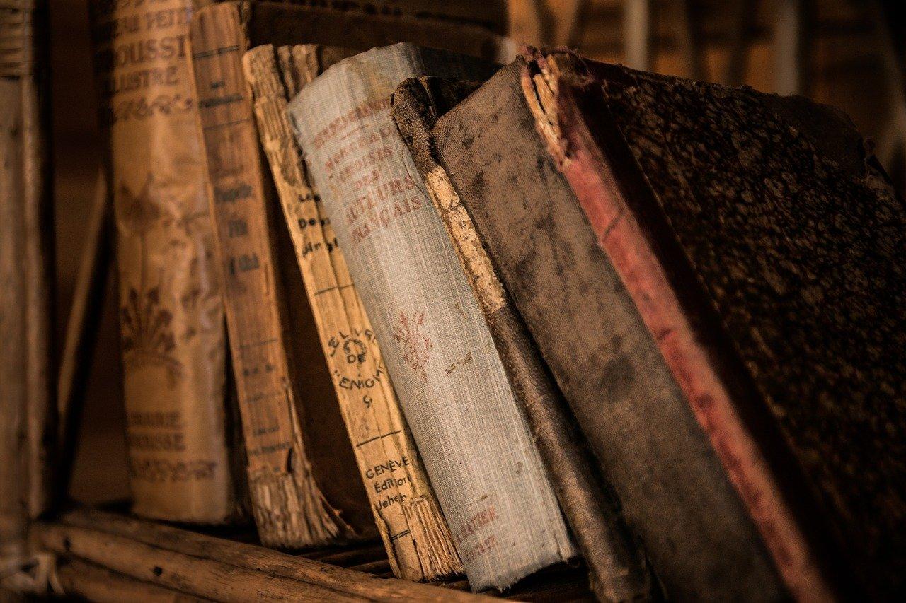 Bücher im Bücherregal höhere Bildung